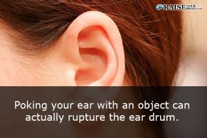 earfact33
