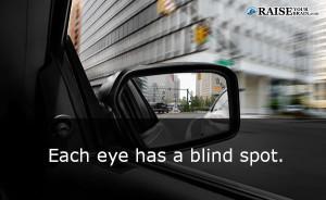 eyefact15
