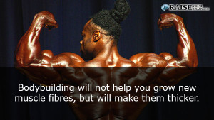 musclefact47
