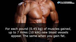 muscle fact - Interesting Human body facts 59
