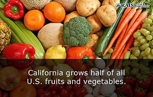 California fun facts 10b