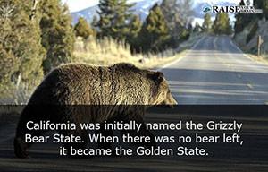 California fun facts 14