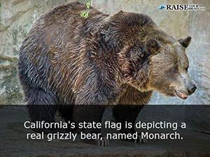 California fun facts 15