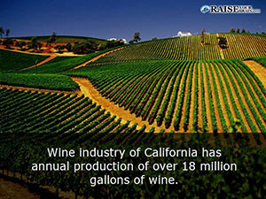 cool facts about california 27