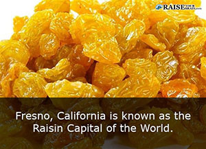 cool facts about california 28