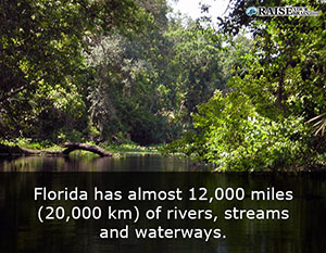 fl_facts_19