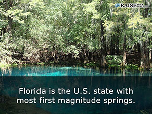 fl_facts_22