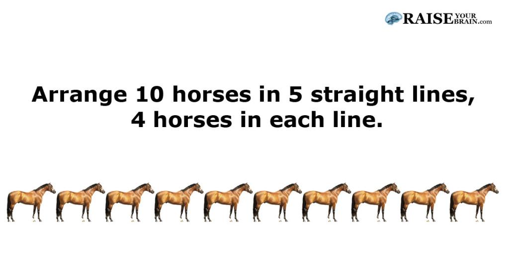 horses_question