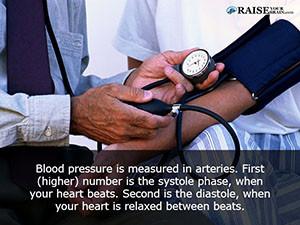 arteries24