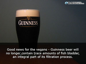 58 20 cool and fun random facts raise your brain for Fish bladder in beer